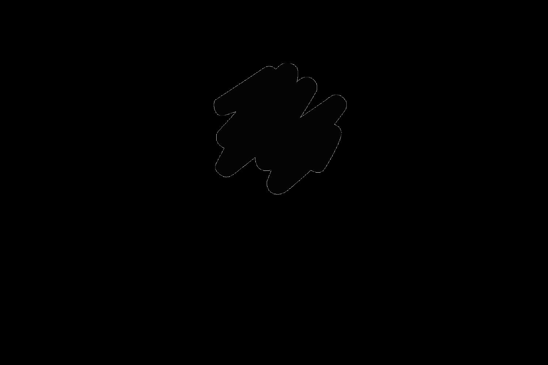 ToulemondeBochart_Logo